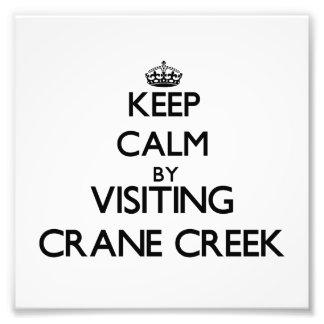 Keep calm by visiting Crane Creek Ohio Photograph