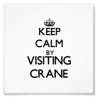 Keep calm by visiting Crane Massachusetts Photograph