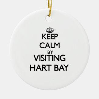 Keep calm by visiting Hart Bay Virgin Islands Ornaments