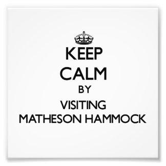 Keep calm by visiting Matheson Hammock Florida Photograph