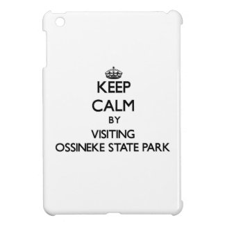 Keep calm by visiting Ossineke State Park Michigan iPad Mini Cases