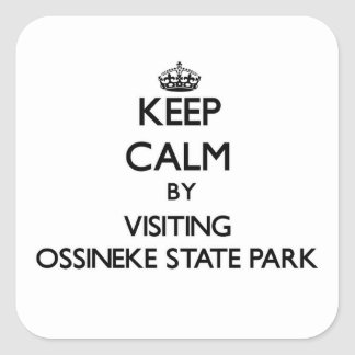 Keep calm by visiting Ossineke State Park Michigan Square Sticker
