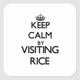 Keep calm by visiting Rice Massachusetts Square Sticker