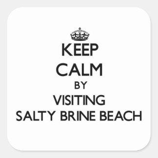 Keep calm by visiting Salty Brine Beach Rhode Isla Square Sticker
