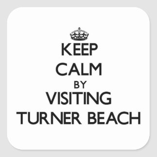 Keep calm by visiting Turner Beach Florida Square Sticker