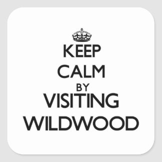 Keep calm by visiting Wildwood New Jersey Square Sticker