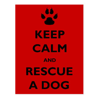 Keep calm dog rescue postcard