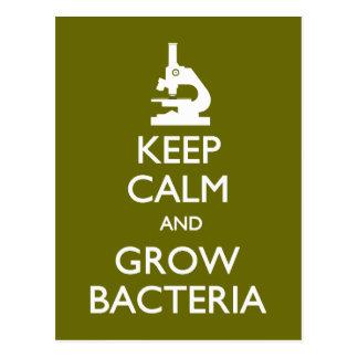 Keep Calm Grow Bacteria postcard
