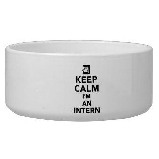 Keep calm I'm an Intern Pet Water Bowl