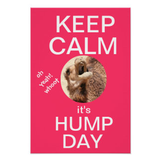 KEEP CALM it's HUMP DAY, whoot! (hot pink) Poster