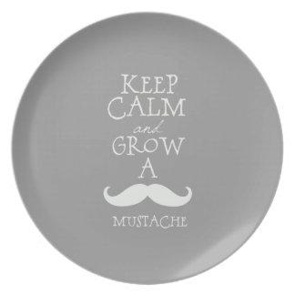 Keep Calm Mustache Dinner Plate