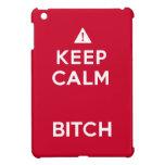 Keep Calm Parody Funny iPad Mini case