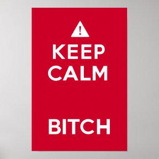 Keep Calm Parody Funny Poster