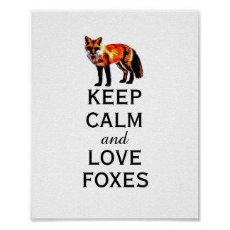 keep calm poster quote love foxes
