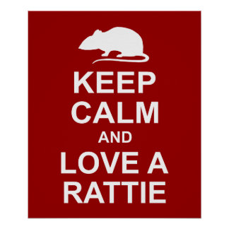 Keep Calm Rat Lover's Poster