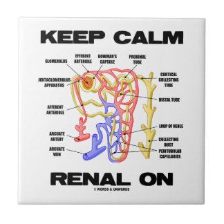 Keep Calm Renal On (Kidney Nephron) Tiles