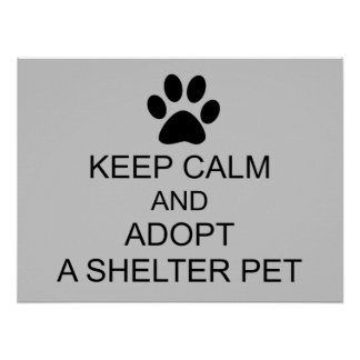 Keep Calm Shelter Pet Poster