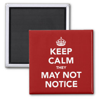 Keep Calm They May Not Notice Magnet