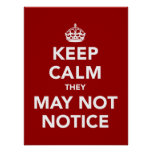 Keep Calm They May Not Notice Poster