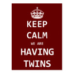 Keep Calm we are having twins Post Card