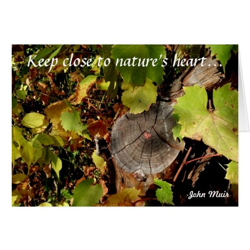 Keep close to nature's heart... cards