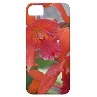 Keep It Between Us iPhone SE/5/5s Case