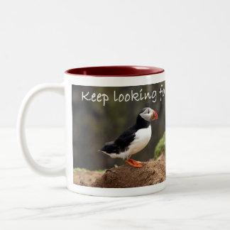 Keep que mira la taza del frailecillo