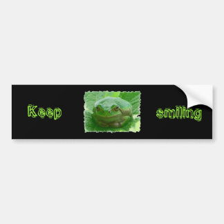 Keep smiling - green smiling frog car bumper sticker