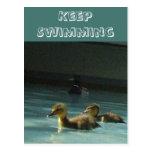 Keep Swimming Ducklings Postcard