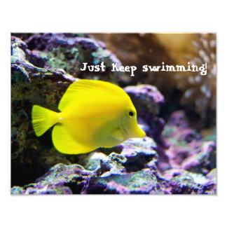 Keep Swimming Motivational Photo