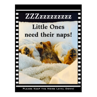 Keep the Noise Level Down Yorkie Postcard