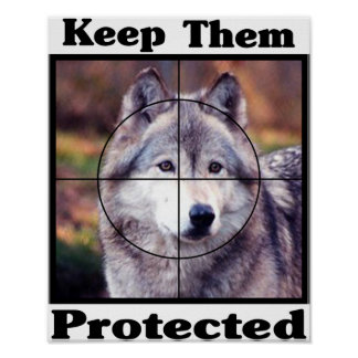 Keep them Protected - Wolf Poster