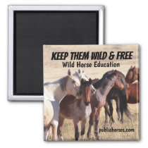 Keep Them Wild & Free Magnet