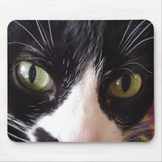 Keep Your Cat Eyes On The Mouse! Mouse Pad