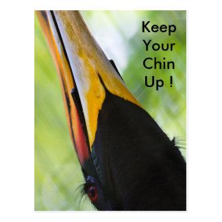 Keep your chin up, postcard