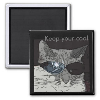 Keep your cool fridge magnets