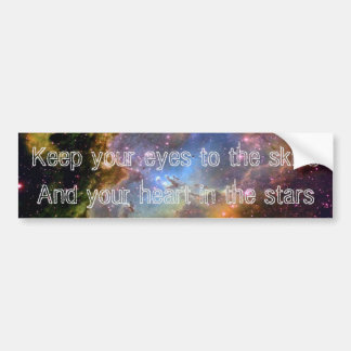 """""""Keep Your Eyes to the Skies"""" Bumper Stickers IV"""