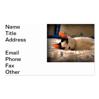Keeper of the Bed Business Card