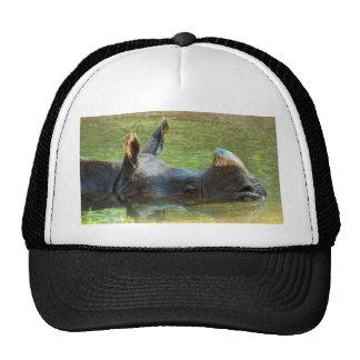 Keeping cool trucker hat