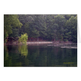 Keeping pace to a different drummer: Walden Pond Card