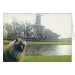 Keeshond and Windmill Stationery Note Card