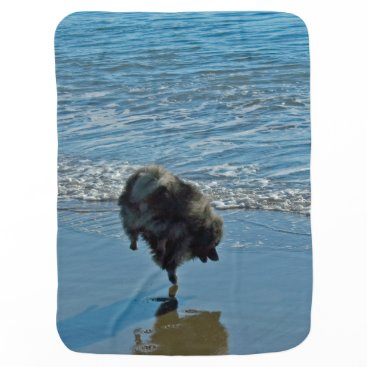 Beach Themed Keeshond Ballet Baby Blanket