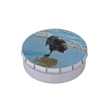 Keeshond Ballet Jelly Belly Candy Tin