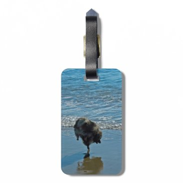 Beach Themed Keeshond Ballet Luggage Tag