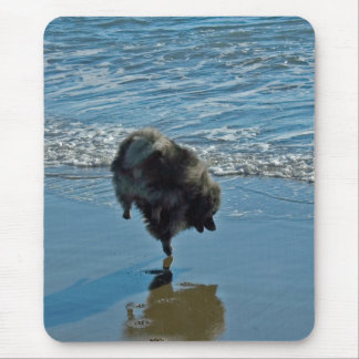 Keeshond Ballet Mouse Pad