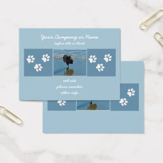 Keeshond Ballet Photograph - Cute Original Dog Art Business Card