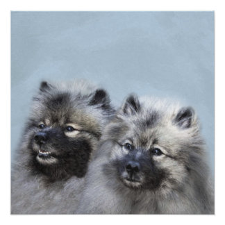 Keeshond Brothers Poster