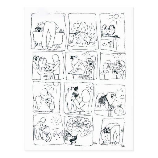 Keeshond comic Bathtime Postcard