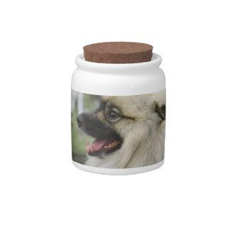 Keeshond Dog  Candy Jar