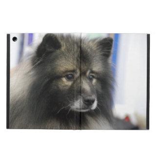 Keeshond Dog iPad Air Case
